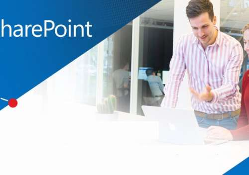 Why SharePoint Development Is the Best Solution for Non-Profit Organizations