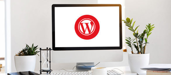 Other WordPress support services