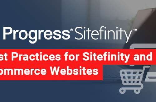 Best Practices for Sitefinity and Ecommerce Websites