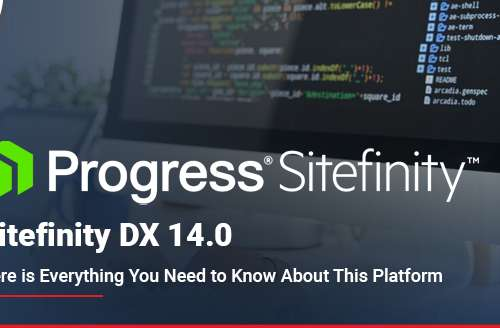 Sitefinity DX 14.0 Here is Everything You Need to Know About This Platform